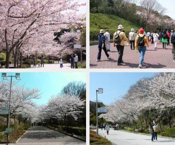 神戸総合運動公園サムネイル