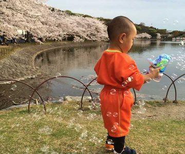 桜と芝生と体操服のコントラスト(MARY)