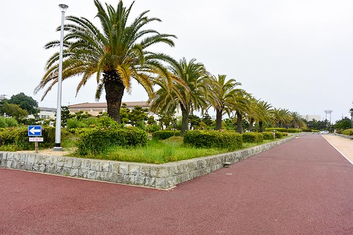 明石海浜公園2