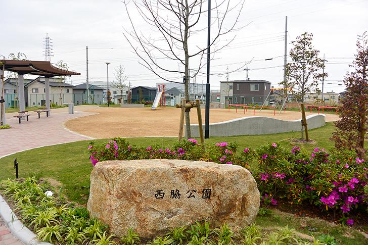 西脇公園2