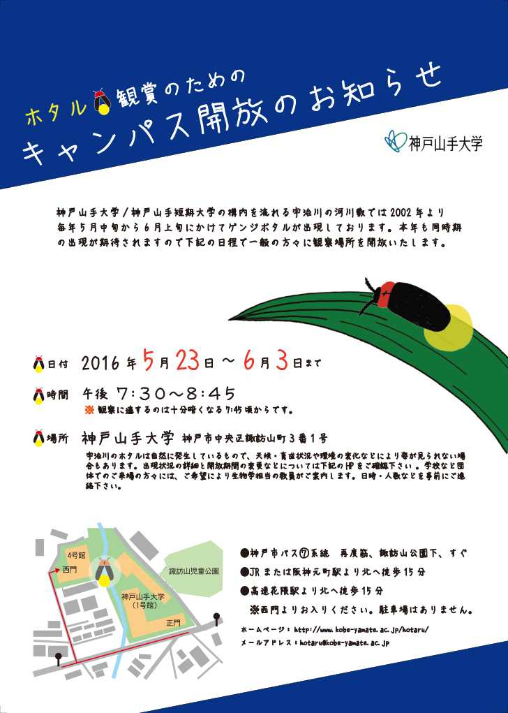 神戸山手大学ホタル