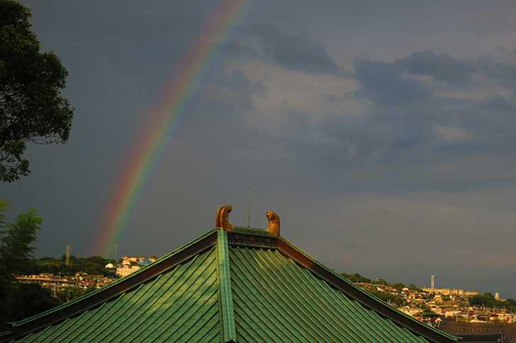 今日は大きな虹が出ました!(はりる)1