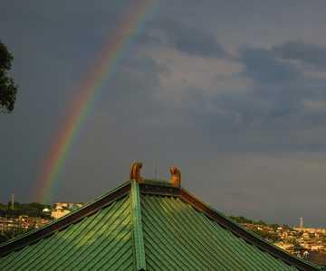 今日は大きな虹が出ました!(はりる)