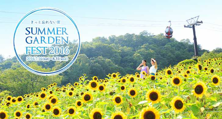 2016_Summer3