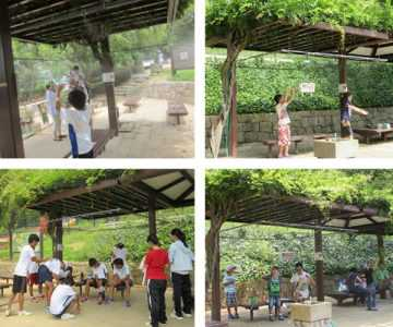 石ケ谷公園夏季限定ミスト